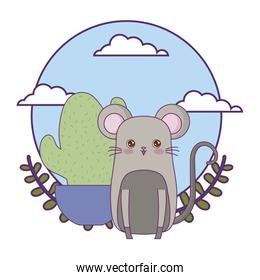 cute mouse animal with cactus in pot plant