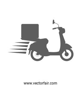 food delivery icon image