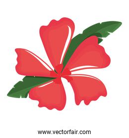 flower with petals red  vector illustration