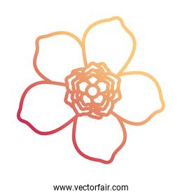 flowerwith five petals design