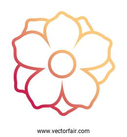 flower with ten petals  design