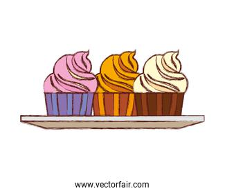 cupcake vector illustration