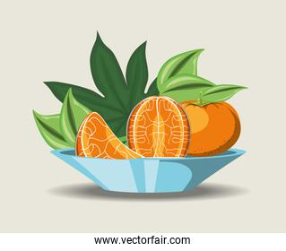 citric fruits design