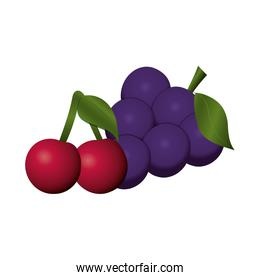 fruits cherries and bunch grapes