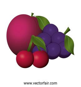 bunch grapes cherries and apple fruits