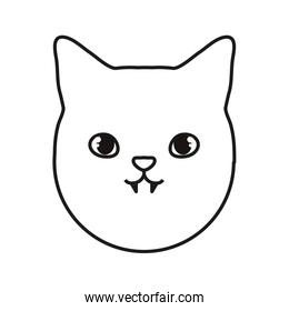 cat icon image