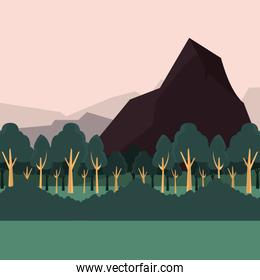 forest bushes and mountains natural landscape