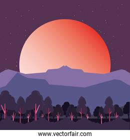trees sunset mountains natural landscape