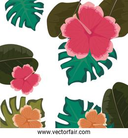 flowers leaves decoration pattern background