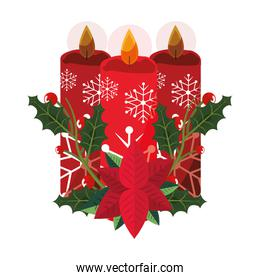 christmas candles flower poinsettia decoration
