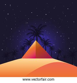 desert night landscape vector ilustration