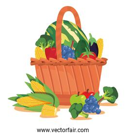 fresh fruit and vegetables basket