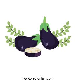 eggplant fresh vegetables icon vector ilustrate