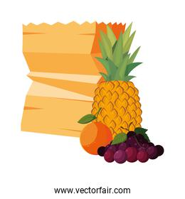 grocery paper bag and fruits