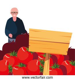 old man shopping tomatoes in wooden placard