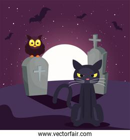 black cat with moon in cemetery scene
