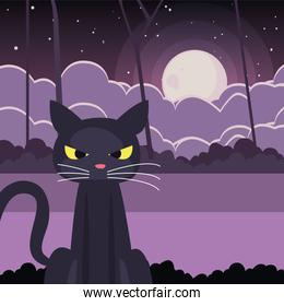 black cat with moon in scene of halloween