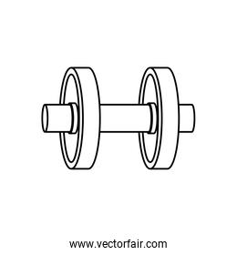 Gym weight isolated