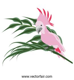 isolated bird and cute plant leaves
