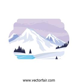 mountains with forest pines snowscape scene