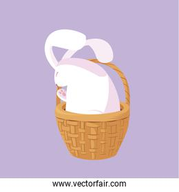 cute rabbit easter character in basket