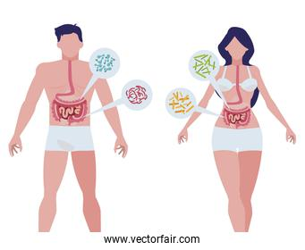 couple with bacterias infographics characters