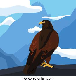 beautiful eagle majestic bird in the landsscape