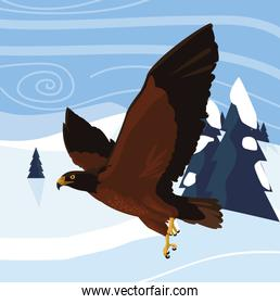 beautiful eagle flying in the snowscape majestic bird