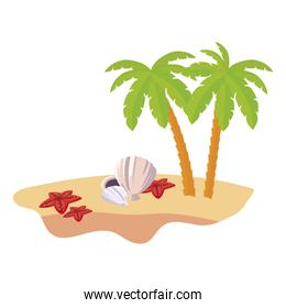 summer beach scene with tree palms and shells