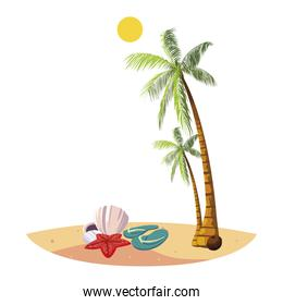 summer beach with palms and flip flops scene