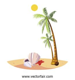 summer beach with palms and shells scene over white