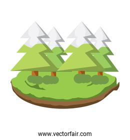 forest with pines icon