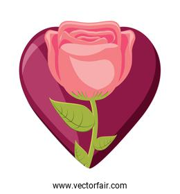 heart and beautiful flower