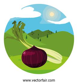Isolated onion and celery icon vector design