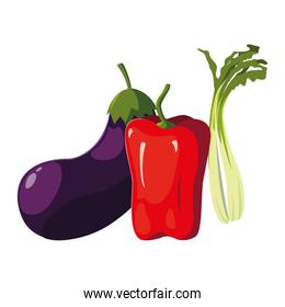 Isolated vegetables set vector design