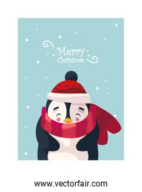 cute penguin with label merry christmas