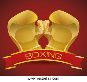 Boxing sport design