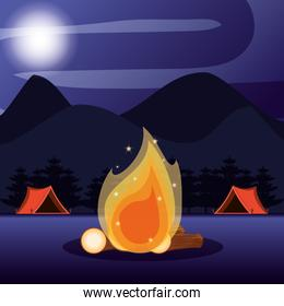 camping zone with tents and nightscape