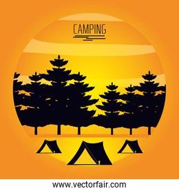 camping zone with tents and landscape