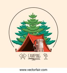 camping zone with tent and trees plant