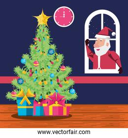 santa claus in window and tree plant christmas