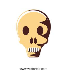 head skull isolated icon