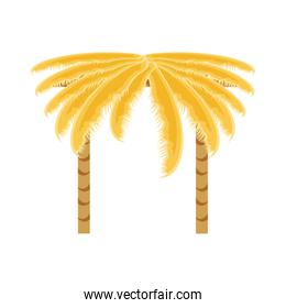 palms trees isolated icon