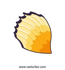 seashell marine animal isolated icon