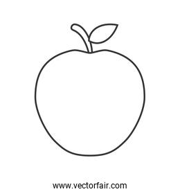 isolated fruit  design. organic food concept , vector graphic