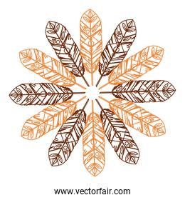Feather design. isolated  bohemic plume, vector graphic