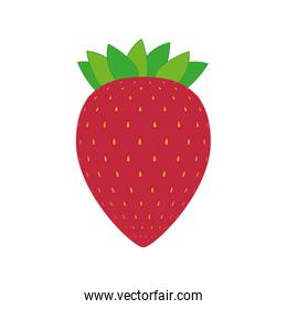 Healthy and organic food. fruit icon. vector graphic