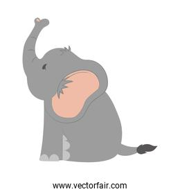 Cute animal design. elephant icon. vector graphic