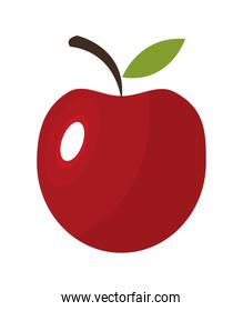 apple icon. Organic and healthy food design. vector graphic