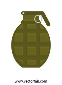 grenade icon. Armed forces. vector graphic
